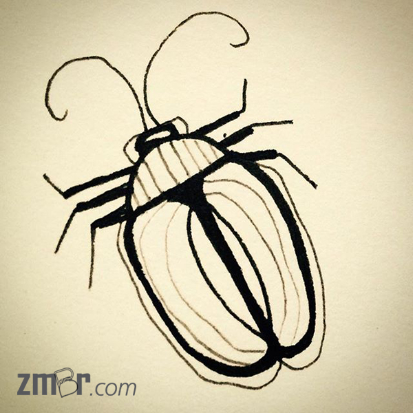 ink beetle
